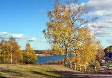 Autumnal nature, Ples Stock Image