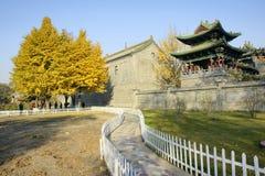 Autumnal park Stock Images