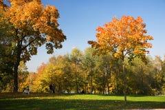 Autumnal park Stock Photo