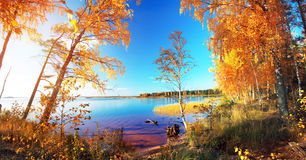 Autumnal Park. Autumn Trees and lake Stock Images