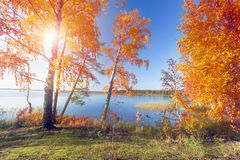 Autumnal Park. Autumn Trees and lake Stock Photo