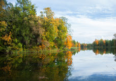 Autumnal Park. Autumn Trees and lake Royalty Free Stock Photography