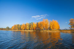 Autumnal Park. Autumn Trees and lake Royalty Free Stock Photos