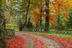 Autumnal park in Italy. Stone fence along footpath in colorful autumnal park of Racconigi in Piedmont, Northern Italy stock photography