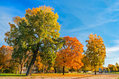 Autumnal park in Jurmala, Dubulti, Latvia. The image was taken in a famous Baltic resort - Jurmala stock image