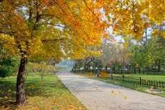 Autumnal park. The autumnal landscape of Jinci Park in Taiyuan, Shanxi, China royalty free stock photos