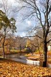Autumnal park, Latvia, Riga stock photo