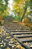 Autumnal park, Latvia, Riga stock photos