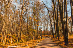 Autumnal park. Photo took in Moscow, Russian, photo is usable on picture post card, calendar, gardening, for wallpaper Stock Photography
