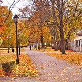 Autumnal park, Riga, Latvia stock photos
