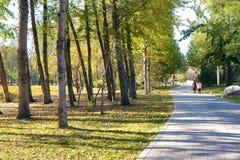 Autumnal park. The autumnal scenery of Jinci Park in Taiyuan, Shanxi, China stock photo