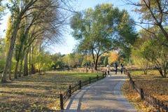 Autumnal park. The autumnal scenery of Jinci Park in Taiyuan, Shanxi, China royalty free stock photos