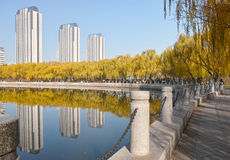 Autumnal park. The autumnal scenery of Longtan Park in Taiyuan,Shanxi,China Royalty Free Stock Image