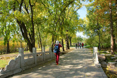 Autumnal park. The visitors walk in the autumnal woods in Jinci Park in Taiyuan, Shanxi, China stock photos