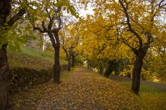 Autumnal path near the castle royalty free stock photo
