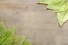 Autumnal pattern - frame of yellow leaves on a wooden background. Place for text Royalty Free Stock Photo