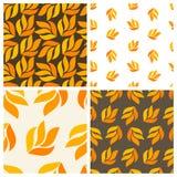 Autumnal patterns Royalty Free Stock Photo