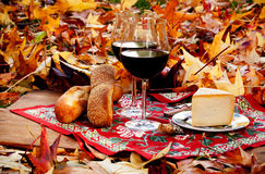 Autumnal picnic Royalty Free Stock Photos