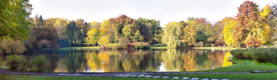 Autumnal pond in park Royalty Free Stock Photo