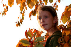 Autumnal portrait Stock Photos
