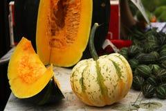 Autumnal pumpkins, harvest Royalty Free Stock Images