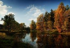 Autumnal reflection. Fall, autumn in garden, autumnal reflection Stock Photography
