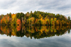 Autumnal Reflection in Calm Waters Stock Image