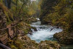 Autumnal river. Stock Photos