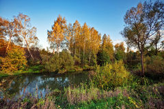 Autumnal river Royalty Free Stock Photos