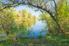 Autumnal riverside scenery Royalty Free Stock Image