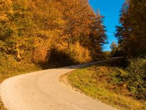 Autumnal road Royalty Free Stock Photography