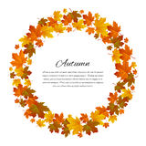 Autumnal round frame. Background with maple autumn leaves. Vector. Illustration Royalty Free Stock Image
