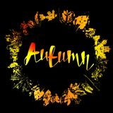 Autumnal round frame. Wreath of autumn leaves. Stock Photography