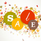 Autumnal Sale Stock Images