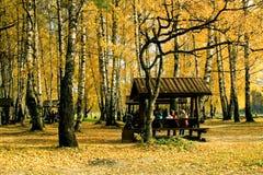 Autumnal scene Stock Image