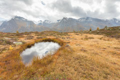 Autumnal scene from  Ahrntal in Italy Royalty Free Stock Image