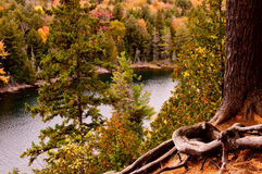 Algonquin Park In Fall. Autumnal scene from Algonquin Park in Ontario royalty free stock image