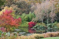 Autumnal scene Stock Photo