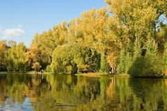 Autumnal scene, bank of lake Royalty Free Stock Image