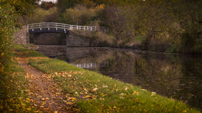 Autumnal scene. Autumnal image of falling amber leaves and a bridge over the Calder and he left navigation canal stock photography