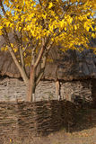 Autumnal scenery. Hut with thatched roof. Wattle. Royalty Free Stock Image