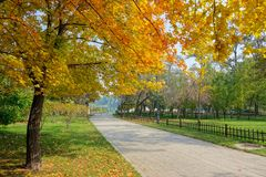 Autumnal park. The autumnal scenery of Jinci Park in Taiyuan, Shanxi, China stock photo