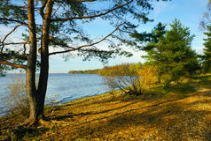Autumnal scenery Stock Photo