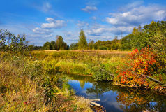 Autumnal scenery royalty free stock photography