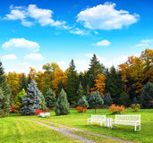 Autumnal scenery Stock Image