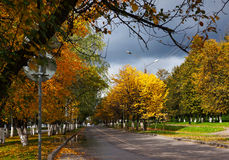 Autumnal scenery in park. Autumnal nature, scenery in central park, Kostroma city Stock Images
