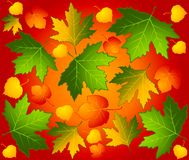 Autumnal seamless background with leaves. Royalty Free Stock Images