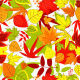 Autumnal seamless pattern Royalty Free Stock Photo