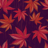 Autumnal seamless pattern with maple leaves on dark background. For textile, wallpaper, wrapping, web backgrounds and other pattern fills Stock Photography