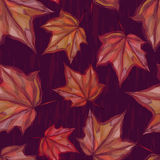 Autumnal seamless pattern with maple leaves on dark background. For textile, wallpaper, wrapping, web backgrounds and other pattern fills Royalty Free Stock Photos